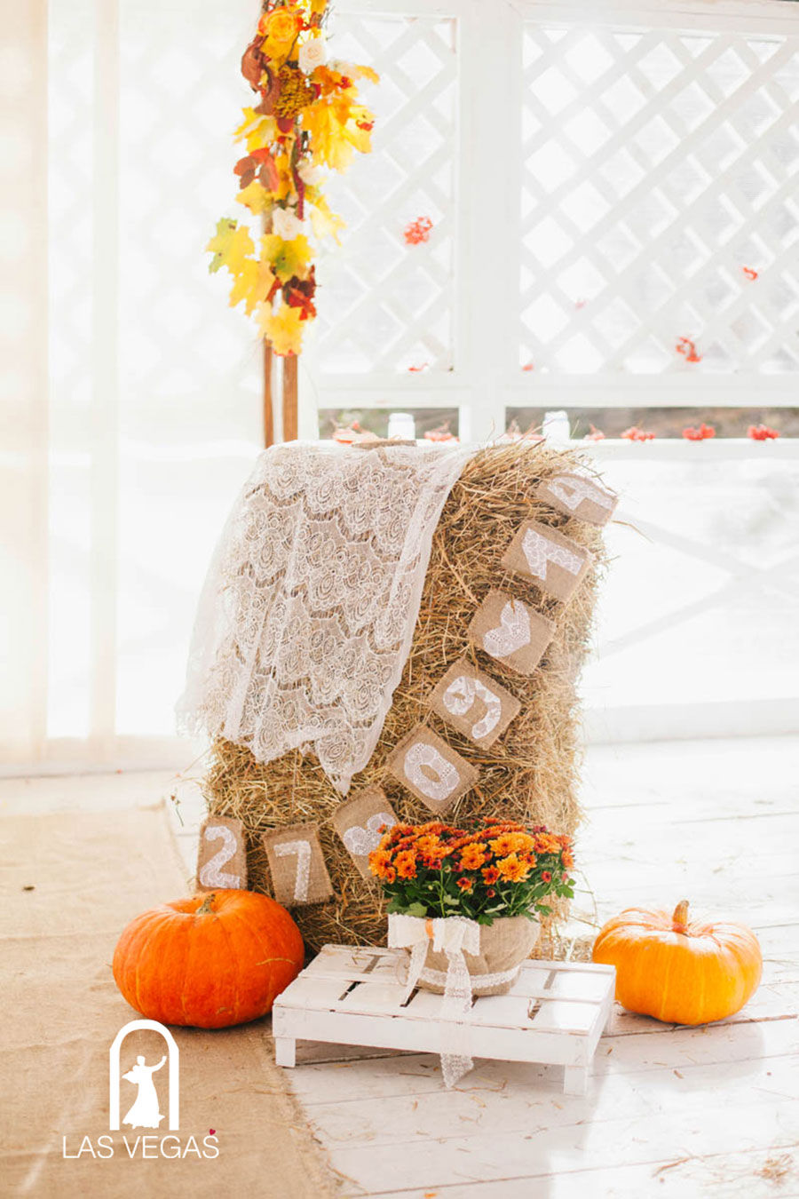Осенний-столик-регистратора